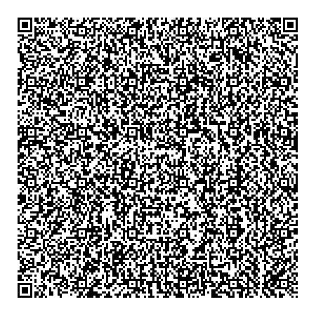 qrquine: a QR code based quine